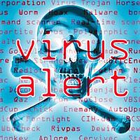 the common types of computer viruses